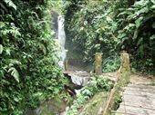 By far one of the best waterfalls I have seen in Ecuador however accompanied by one of the most sketchy bridge crossings.: by kim-bloomfield, Views[277]