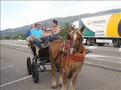 Mi familia gets a surprise horse and buggy ride from the owner of Hostel Asturias!: by kimlyons, Views[519]