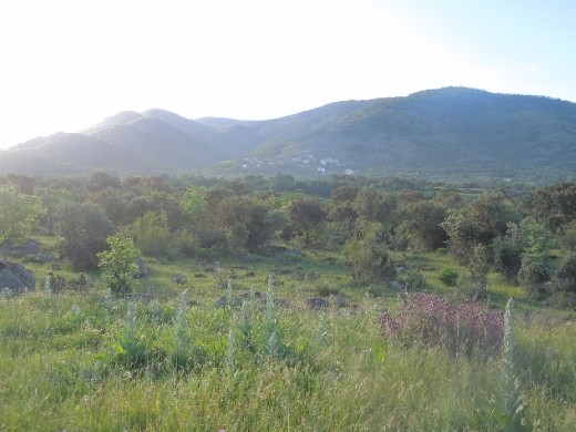Day 18: On the Way to Banos de Montemajor