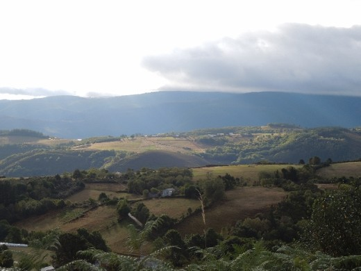 Day 26: On the Way to Fonsagrada
