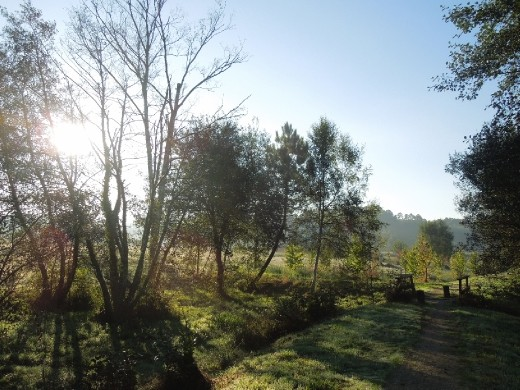 Day 35: On the Way to Betanzos