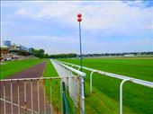 Deauville  Hippodrome: by kimswim, Views[81]