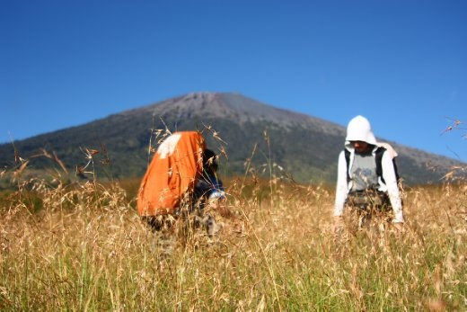 Two climbers enjoying the alang-alang field with Rinjani Peak at the background