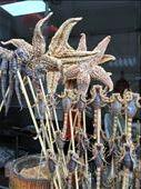 Wangfujing Market street food- fried starfish and scorpions: by kirmily, Views[233]