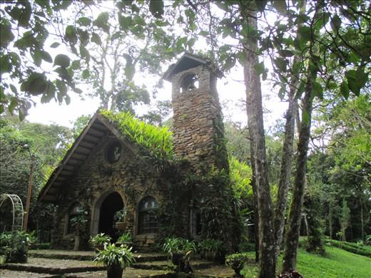 Selva Negra eco-resort. even the chapel roof is green