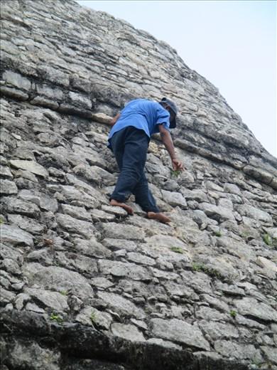 A spot of weeding, Coba ruins