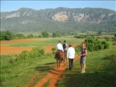 A walk in the countryside at Vinales: by kirstenvelthuis, Views[93]