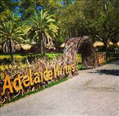 Adelaide Writer's Week (March 2014) #adlww: by kirstyv18, Views[57]