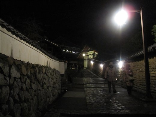 A famous backstreet in Nara