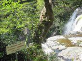 Cheonjeyon Falls, Jeju Island: by kitschey, Views[132]