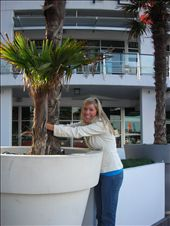 Hugging a palm tree. I can't get enough of these plants. I heart palms.: by kiwi_kerry, Views[224]