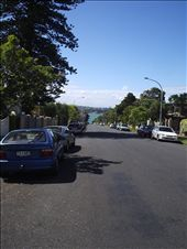 On the roadway looking towards Cheltenham beach.: by kiwi_kerry, Views[276]