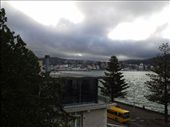 Partly climbed up Mt Victoria in Oriental Bay looking down at the road and the harbourfront.: by kiwi_kerry, Views[257]