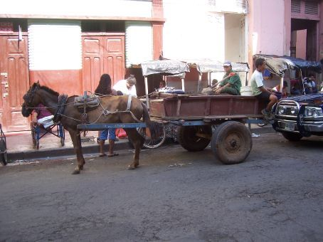 Horse-drawn carriages are everywhre in Granada