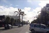 by kiwiaoraki, Views[360]