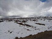 by kiwiaoraki, Views[76]