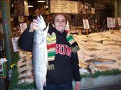 Pike fish market: by kiwiaoraki, Views[463]