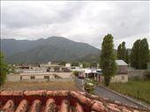 by kiwiaoraki, Views[282]