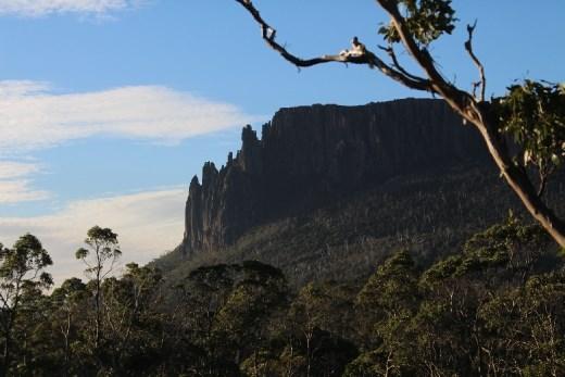 Mt. Oakleigh