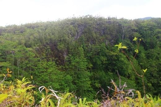 Mt. Matavanu