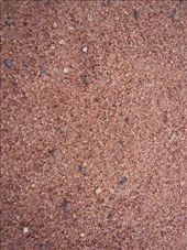 Red Outback sand: by kiwiaoraki, Views[534]