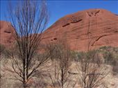 The Outback seems inhospitable, but the Aborigines have lived off this land for 50,000+ years: by kiwiaoraki, Views[268]