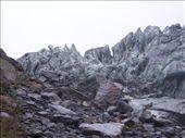 by kiwiaoraki, Views[352]