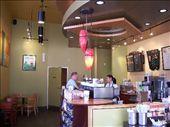 Interior of Starbucks in Rotorua: by kiwiaoraki, Views[887]