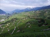 Valais Switzerland: by klynne, Views[288]