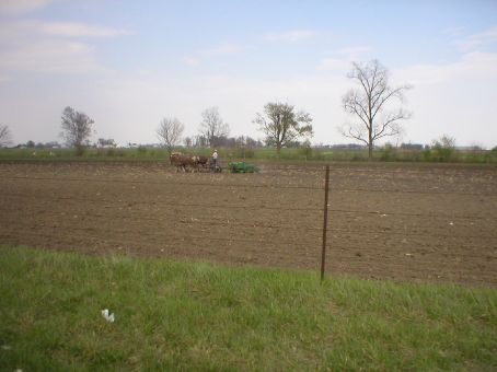 Amish, Northern Indiana, USA