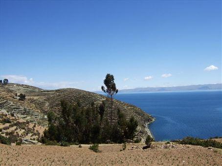 Inca terraces on Isla del Sol, Lake Titicaca, Bolivia