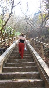 Staircase up the the wat in my saggy ass pants, they're all the rage :): by kmanzoni, Views[481]
