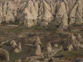 by kokoricooo, Views[127]