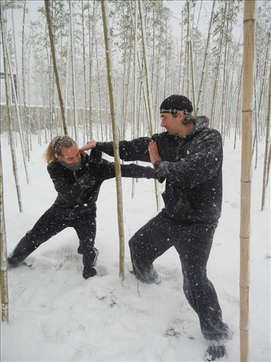 Bamboo Forest, Round One - Fight!