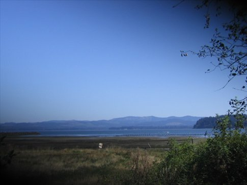 The bay across the way.  The land you see is Long Island which is a wildlife refuge with old growth forest.  This is across the street from our house.
