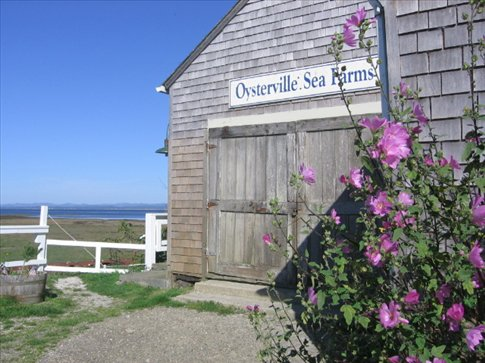 The Sea Farm Shop in Oysterville