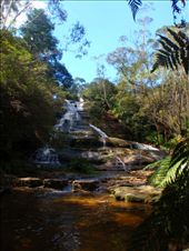 hiking in the Blue Mountains: by kp207105, Views[71]