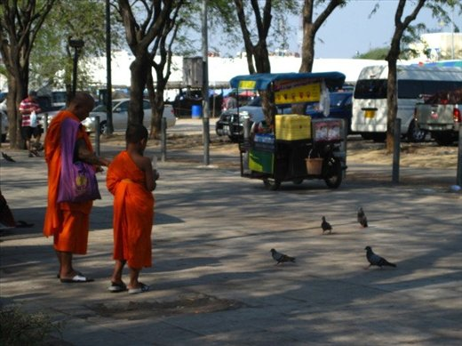 I respect the monks, living simply in a complex world