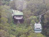 Skyrail over the rainforest: by kristamrome, Views[290]