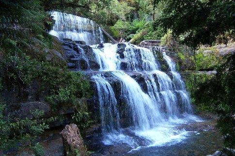 Lower Liffey Falls - bushwalk near host 4