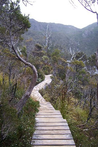 Cradle Mountain - Dove Lake hike