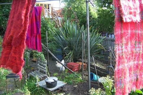 Kate's Chickens and bedsheets on the clothesline
