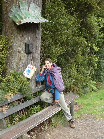 Phone Home - roadside attraction on Stewart Island