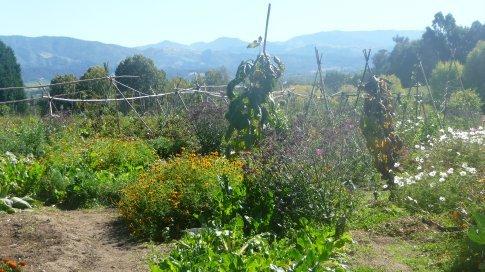 Garden at Riverside Community