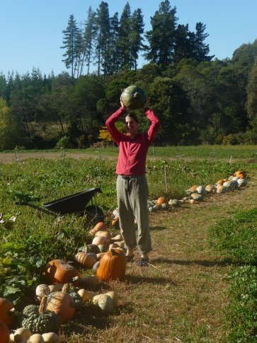 Posing with the Pumpkin/Squash harvest at Riverside Community's upper garden