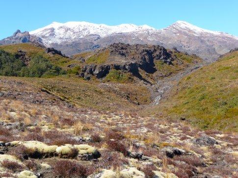 Mt. Ruapehu - Tongariro NP - Silica Rapids hike