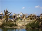 Uros Islands: by kristinandchris, Views[115]
