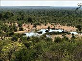 watering hole: by krodin, Views[270]