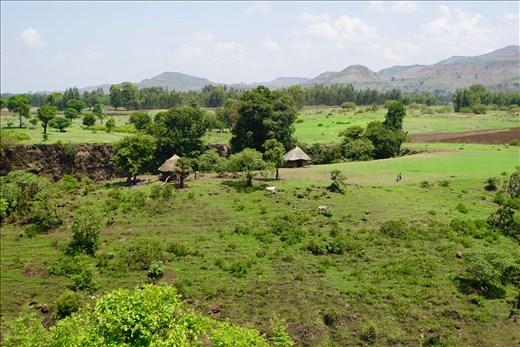 fields by Blue Nile Falls