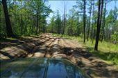 Jeep tracks from Khoboy Point: by krodin, Views[109]